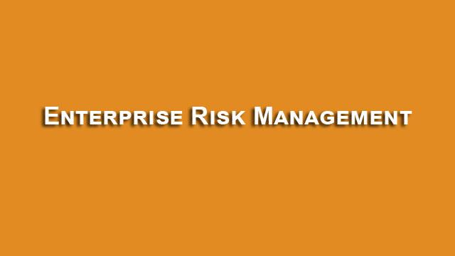 Enterprise Risk Management Process