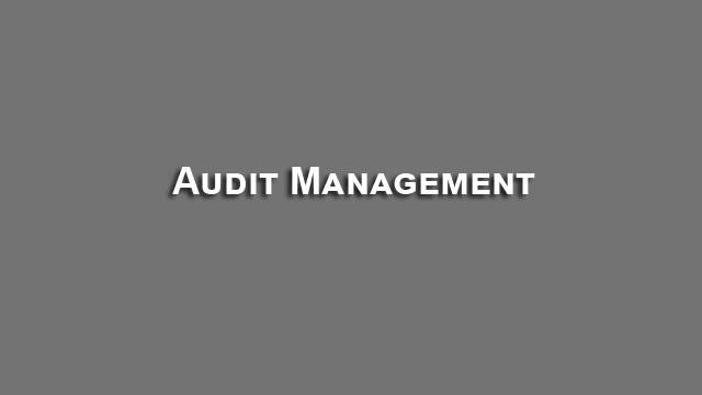 Audit Management