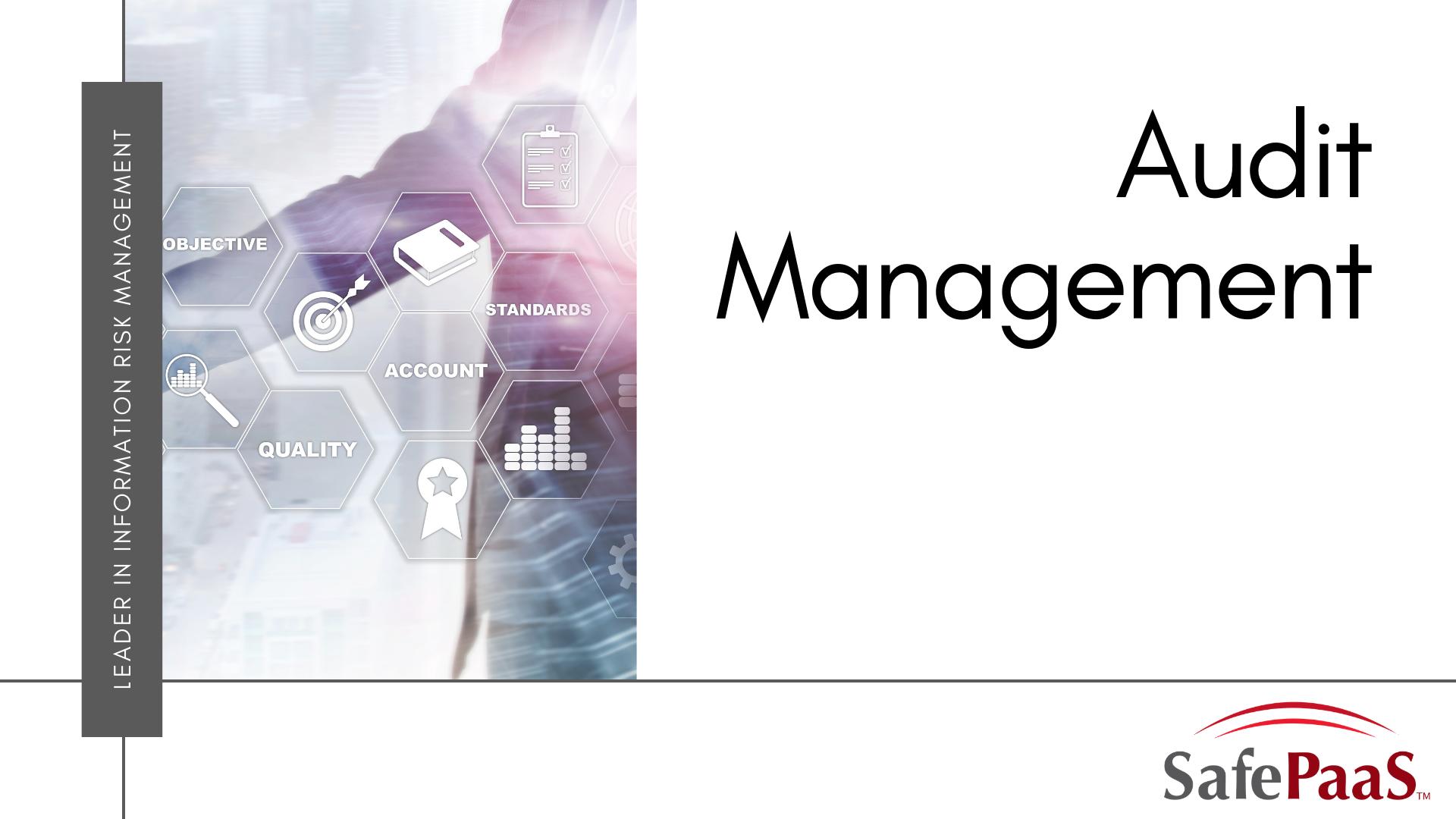 Audit Management Infographic